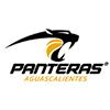 Panteras Parque Lefevre
