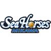 Mikawa Seahorses
