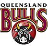 Queensland Bulls