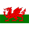 威尔士 女子