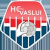 ГК Васлуи
