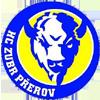 HC Zubr普熱羅夫