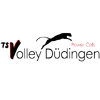 TS Volley Duedingen