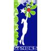 Basket Landes - Feminino