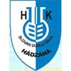 HKM Slovan Duslo Sala
