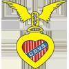 GD Vitoria de Sernache