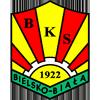 BKS Stal Bielsko Biala