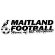 梅特蘭FC