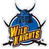 Panasonic Wild Knights