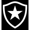 Ботафаго РЖ U20