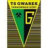 Gwarek塔爾諾夫斯凱古雷
