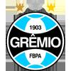 格雷米奥RS 20岁以下
