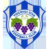 Tochigi Uva FC