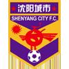Shenyang City Public