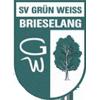 SV Grun-Weiss布裏塞朗