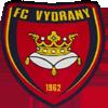 维迪拉尼FC