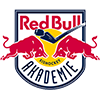 Red Bull Hockey Juniors