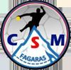 CSM Fagaras
