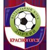佐基利Krasnogorsk