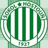 Sokol Hostoun