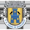 Desportivo Torre Moncorvo