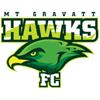 MT Gravatt Hawks