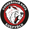 HC Bobruisk