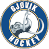 Gjøvik Hockey