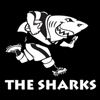 Sharks B