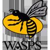 Wasps RFC