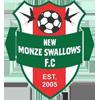 New Monze Swallows