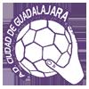 BM瓜達拉哈拉