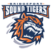 BRI Sound Tigers