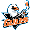 圣地亚哥Gulls