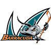 聖荷西Barracuda