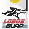 Lobos BUAP - Damen