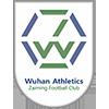 Hubei Athletics Zaiming
