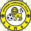 FC Sioni Bolnisi
