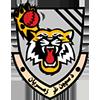 Speenghar Tigers