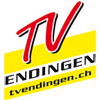 TV Endingen Handball