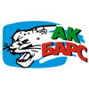 Bars Kazan